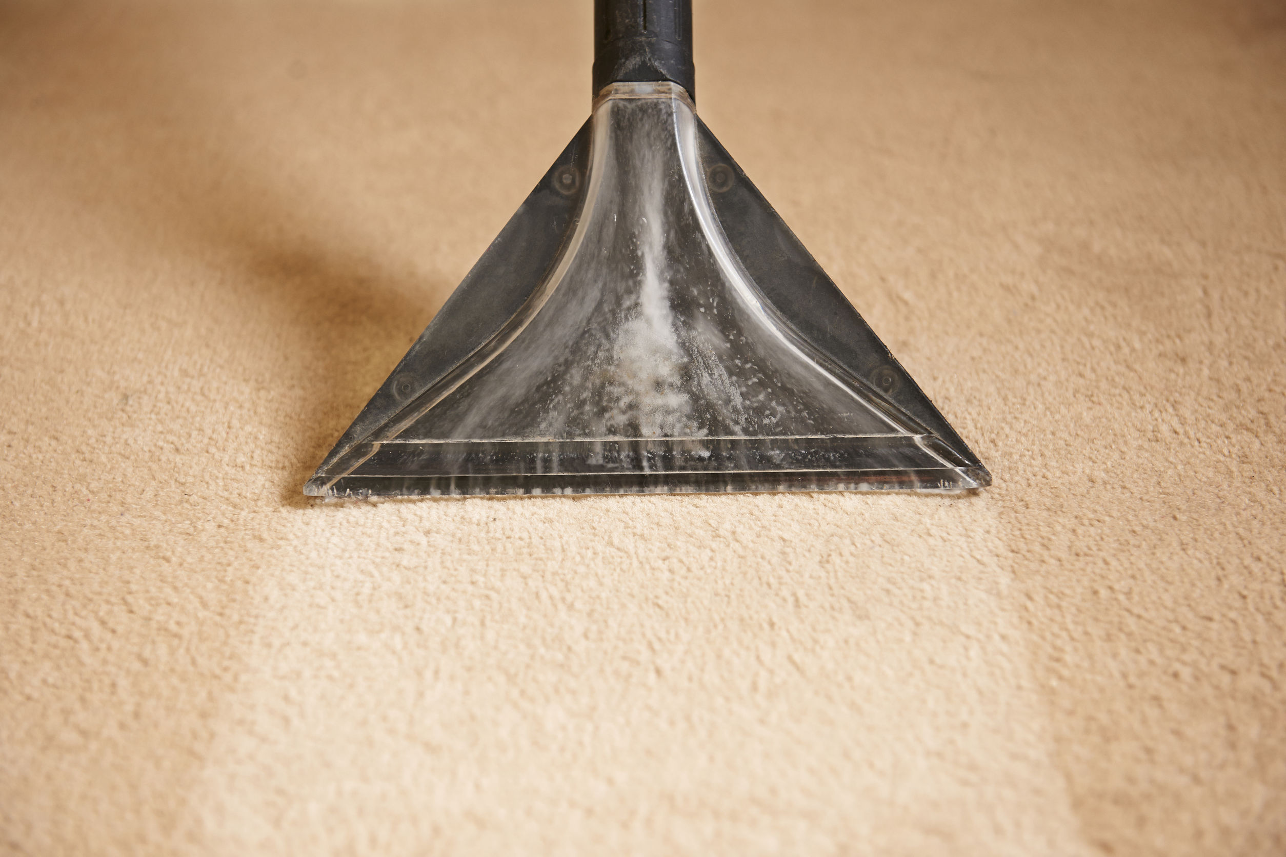 Carpet Cleaner Coldwater Michigan